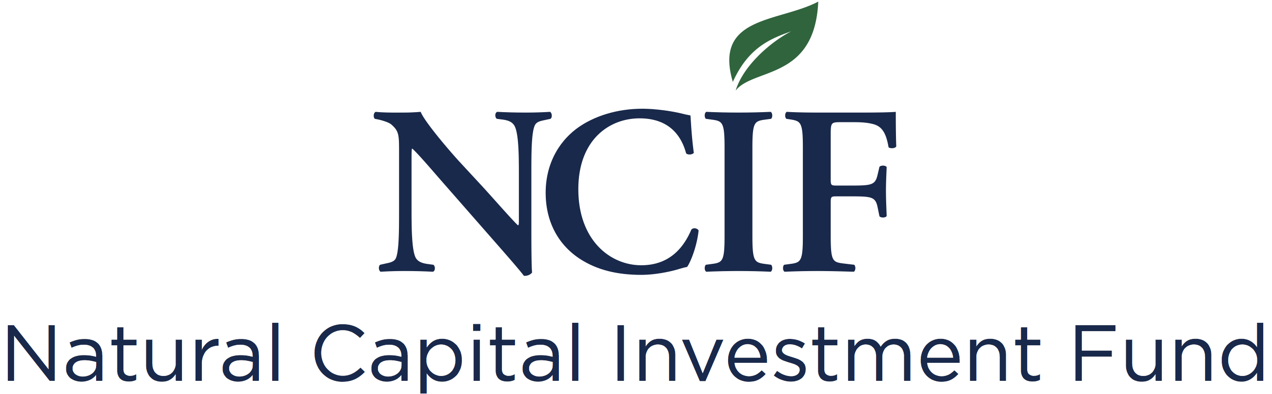 NCIF-logo-with-name-300dpi.jpg